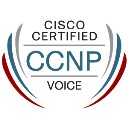 CISCO voice